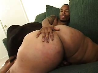 Big ass big tit latin bbw